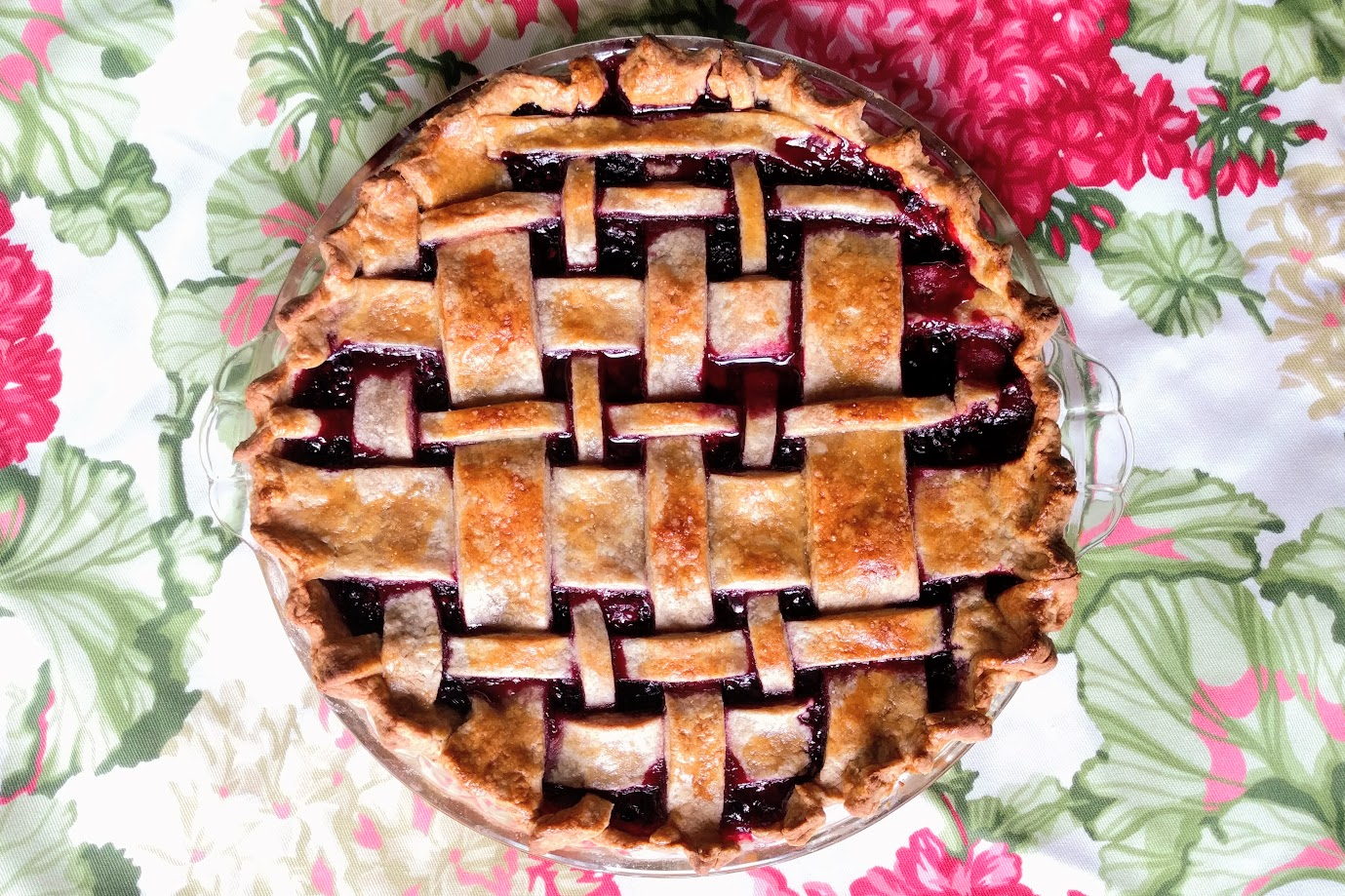 My First Wild Blackberry Pie